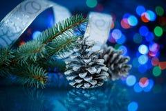 Cônes de sapin de Noël Photo libre de droits