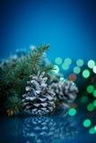 Cônes de sapin de Noël Photographie stock libre de droits