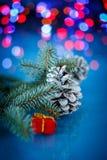 Cônes de sapin de Noël Photos libres de droits