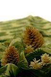 Cônes de sapin sur la draperie verte Photographie stock