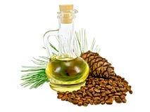 Cônes et écrous de cèdre d'huile Photos libres de droits