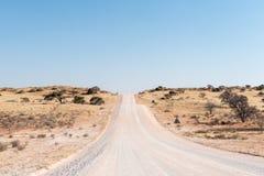 C17-road w południowym Kalahari w Namibia krzyżuje porosłego sandd Fotografia Royalty Free