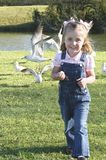 C - Small Girl Feeding Birds 1 Stock Photo
