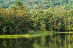 côté de lac de 7 kot Images stock