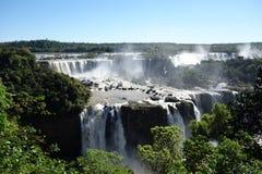 Côté des chutes d'Iguaçu - du Brésil Image libre de droits