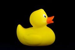 Côté en caoutchouc de canard Photos stock
