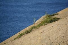 Côte à Malte Photos libres de droits