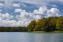 Côte automnale de lac Photo libre de droits