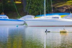 côte avec des yachts Images stock