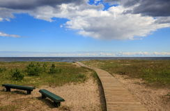 Côte baltique en été Photos stock