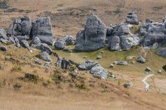 Côte de château, Nouvelle Zélande Photographie stock