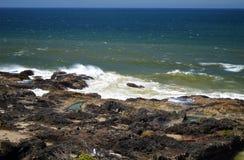 Côte de l'Orégon Image libre de droits