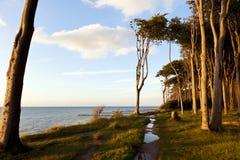 Côte de mer baltique chez Nienhagen Photos libres de droits