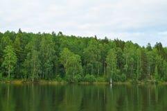 Côte du lac Onega La Carélie Photographie stock libre de droits