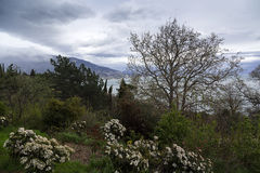 Côte du sud de la Crimée au printemps images stock