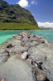 Côte et jetée hawaïennes Images stock