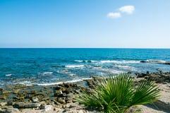 Côte méditerranéenne de Viareggio image libre de droits