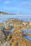 Côte rocheuse Photos libres de droits