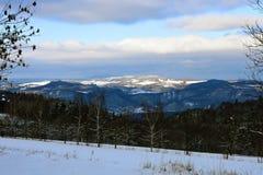 Côtes de neige Photographie stock libre de droits