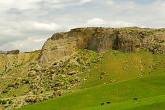 Côtes et montagnes Image stock