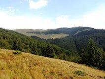 Côtes vertes de montagnes Images libres de droits
