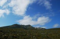 Côtier frottez et ciel bleu Photo stock