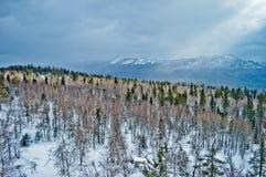 33c ural χειμώνας θερμοκρασίας της Ρωσίας τοπίων Ιανουαρίου Εθνικό πάρκο Taganay, Ρωσία Στοκ φωτογραφίες με δικαίωμα ελεύθερης χρήσης