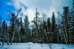 33c ural χειμώνας θερμοκρασίας της Ρωσίας τοπίων Ιανουαρίου Εθνικό πάρκο Taganay, Ρωσία Στοκ εικόνες με δικαίωμα ελεύθερης χρήσης