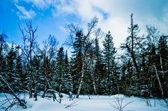 33c ural χειμώνας θερμοκρασίας της Ρωσίας τοπίων Ιανουαρίου Εθνικό πάρκο Taganay, Ρωσία Στοκ Εικόνες