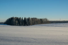 33c ural χειμώνας θερμοκρασίας της Ρωσίας τοπίων Ιανουαρίου ημέρα ηλιόλουστη Χειμερινή πτώση Τα φωτεινά χρώματα Απλό τοπίο Χειμερ Στοκ εικόνες με δικαίωμα ελεύθερης χρήσης