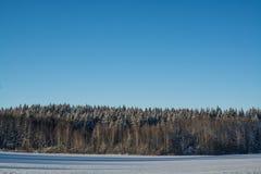 33c ural χειμώνας θερμοκρασίας της Ρωσίας τοπίων Ιανουαρίου ημέρα ηλιόλουστη Χειμερινή πτώση Τα φωτεινά χρώματα Απλό τοπίο Χειμερ Στοκ Εικόνες
