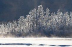 33c ural χειμώνας θερμοκρασίας της Ρωσίας τοπίων Ιανουαρίου ΗΠΑ albedo στοκ εικόνα με δικαίωμα ελεύθερης χρήσης