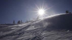 33c ural χειμώνας θερμοκρασίας της Ρωσίας τοπίων Ιανουαρίου Κρύα ημέρα, με το χιόνι που λάμπει στον ήλιο απόθεμα βίντεο