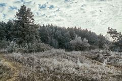 33c ural χειμώνας θερμοκρασίας της Ρωσίας τοπίων Ιανουαρίου Παγωμένο δάσος σε ένα υπόβαθρο του μπλε ουρανού με τα σύννεφα Στοκ Φωτογραφίες
