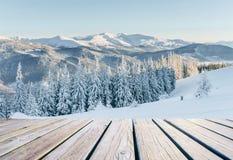 33c ural χειμώνας θερμοκρασίας της Ρωσίας τοπίων Ιανουαρίου Σε αναμονή για τις διακοπές Δραματική χειμερινή σκηνή Καρπάθιος Στοκ εικόνες με δικαίωμα ελεύθερης χρήσης