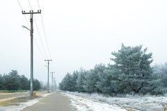 33c ural χειμώνας θερμοκρασίας της Ρωσίας τοπίων Ιανουαρίου Υποστηρίξεις ηλεκτροφόρων καλωδίων, ηλεκτρική ενέργεια, γραμμή, στήλη Στοκ Φωτογραφία