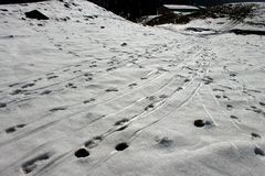33c ural χειμώνας θερμοκρασίας της Ρωσίας τοπίων Ιανουαρίου Χιονώδες υπόβαθρο Στοκ Εικόνα