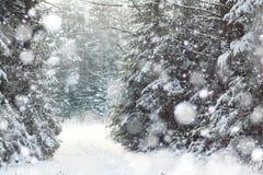 33c ural χειμώνας θερμοκρασίας της Ρωσίας τοπίων Ιανουαρίου Στοκ εικόνα με δικαίωμα ελεύθερης χρήσης