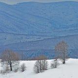 33c ural χειμώνας θερμοκρασίας της Ρωσίας τοπίων Ιανουαρίου Στοκ Εικόνες