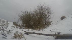 33c ural χειμώνας θερμοκρασίας της Ρωσίας τοπίων Ιανουαρίου απόθεμα βίντεο