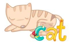 C is voor Kat vector illustratie
