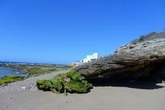 Caños de Meca海滩 卡迪士 免版税库存图片