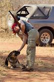 Caça do caçador Foto de Stock Royalty Free