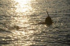 Caça do mar Imagem de Stock