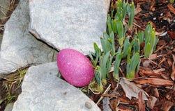 Caça do ovo da páscoa Fotos de Stock Royalty Free
