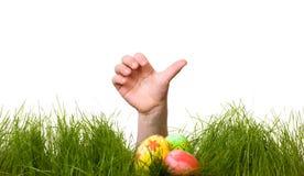 Caça do ovo de Easter fotos de stock