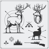 Caça dos cervos Grupo de etiquetas da caça do vintage, de crachás e de elementos do projeto Imagem de Stock Royalty Free