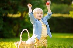 Caça encantador do rapaz pequeno para o ovo da páscoa no parque da mola no dia da Páscoa Foto de Stock Royalty Free