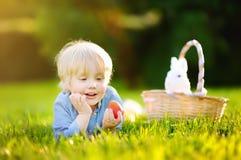 Caça encantador do rapaz pequeno para o ovo da páscoa no parque da mola no dia da Páscoa Imagens de Stock
