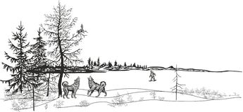 Caça para um esquilo ilustração royalty free
